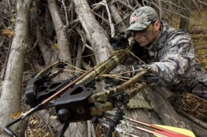 Crossbows vs Compound Bows vs Traditional Long Bows or Recurve Bows